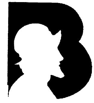 logo Banco Internacional de Panamá