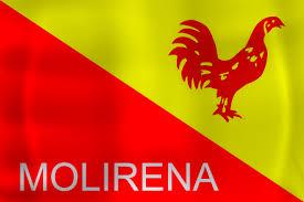 logo Movimiento Liberal Republicano Nacionalista
